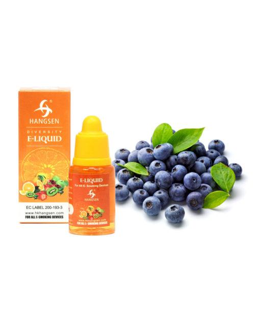 Hangsen 24mg Blueberry Flavour E liquid 10ml