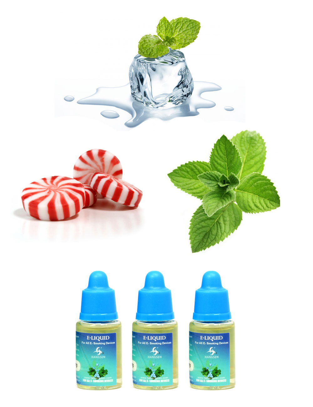 Hangsen 12mg menthol e liquid bundle